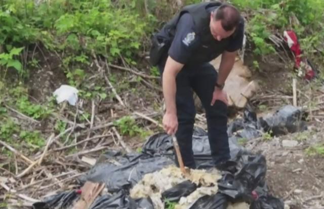 Asbestos Dumping Dangers Of Dumping Asbestos