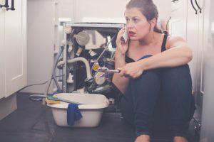 Dishwasher Flood